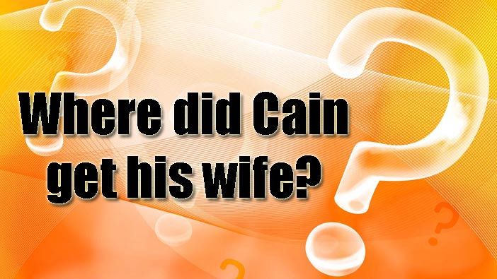how did cain meet his wife in the bible