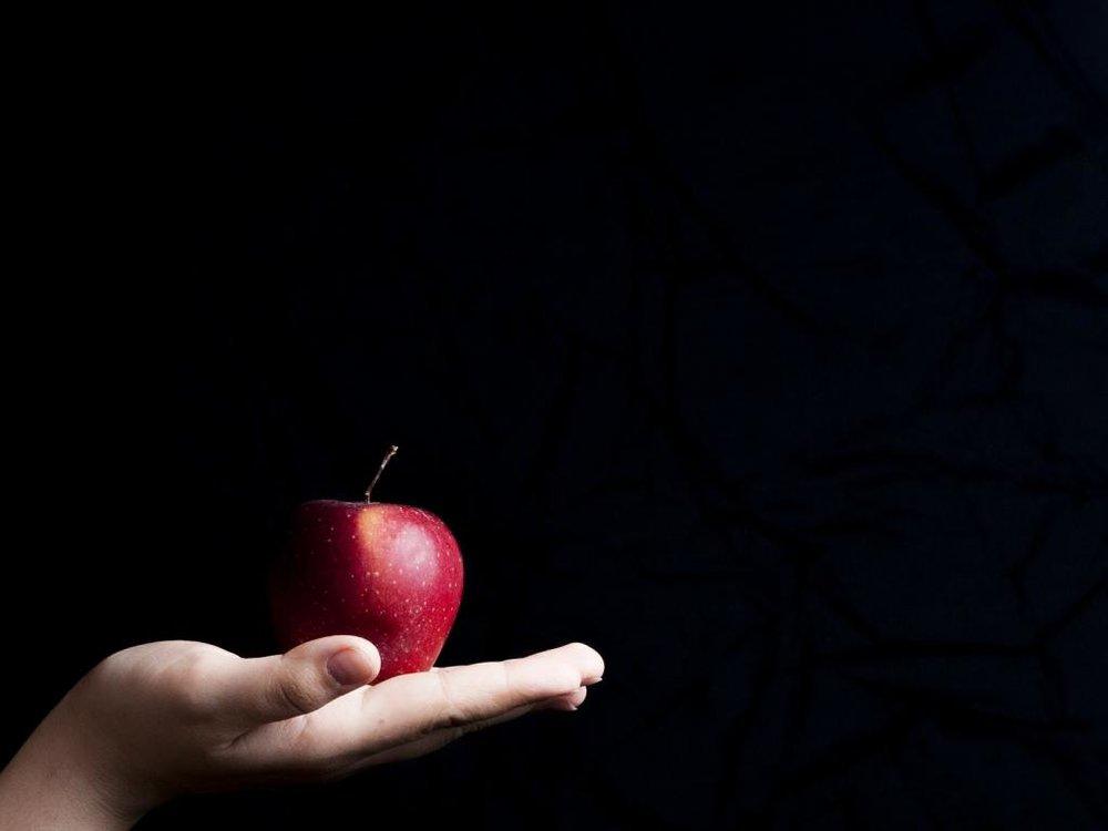 apple-464182_1920-1.jpg