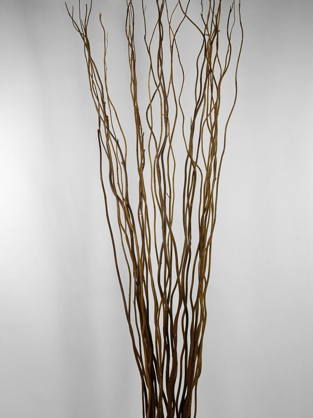 twigs-icy.jpg