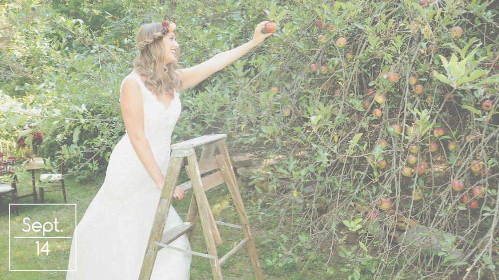 Farm Luxe Wedding Inspiration