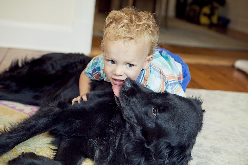 lifestyle-editorial-children-washington-dc-malek-naz-photography-contempo-kids-boy-and-dog.jpg