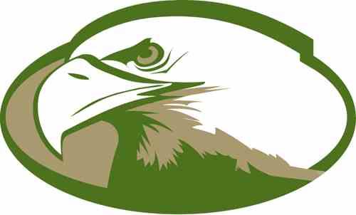 life eagle.jpg