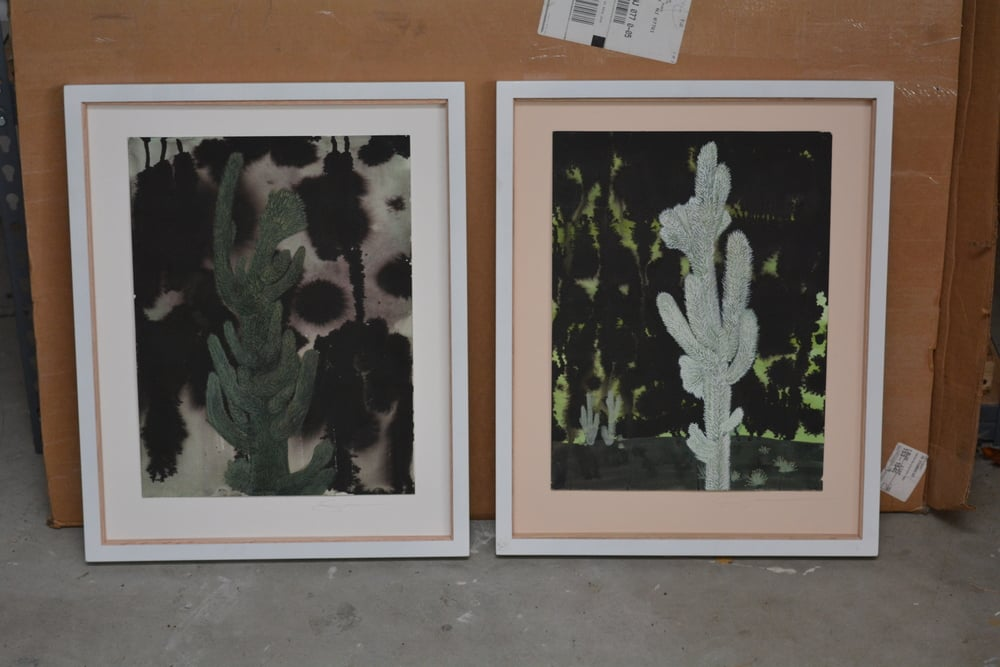 "Furry Cacti with Stormy Skies - Pair (propped in studio, glass removed from frames)  12"" x 18"" each painting unframed  gouache, ink, paper  2014"