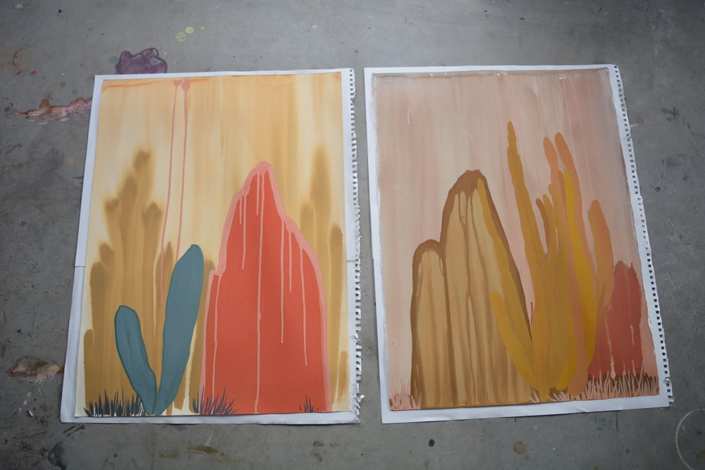 "Cacti with Mountains and Grasses, pair mounted on paper on studio floor  29.5"" x 22"" each  gouache, ink, paper  2014 - 2015"