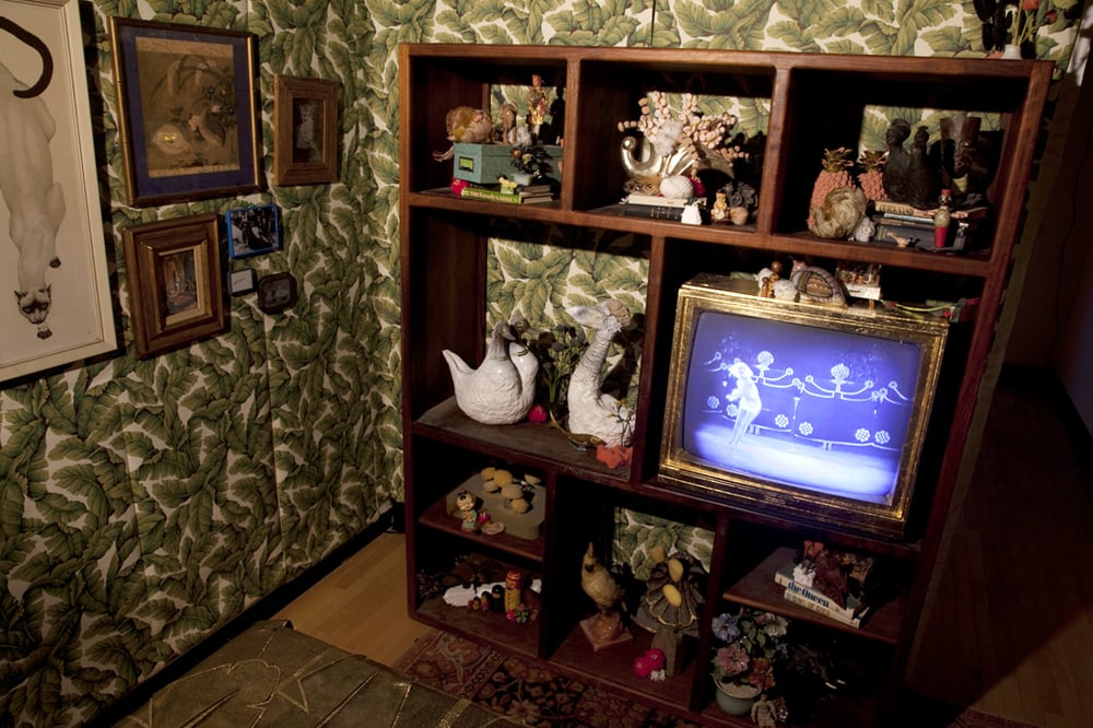 So Exotic  10' x 27'  The entire bookshelf with TV facing the bed with a scene of Salomé dancing.  2008-2010  Image credit Lisa Talbot