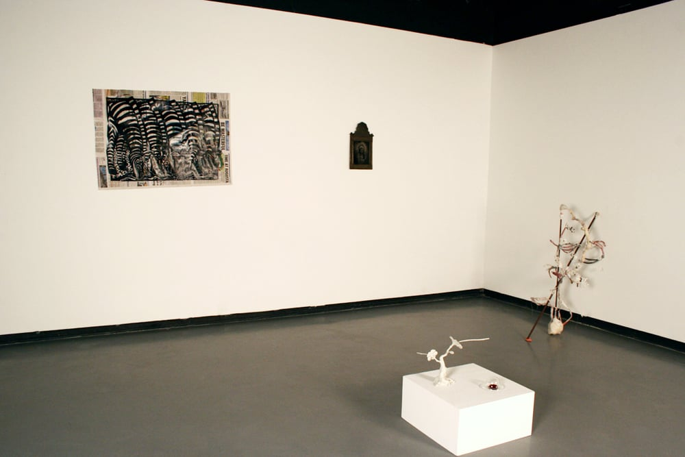 So Exotic   Installation View   2010