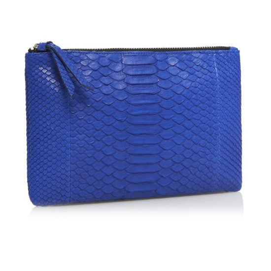 CZ_Electric Blue SS2014 Pouch Small Res.jpg
