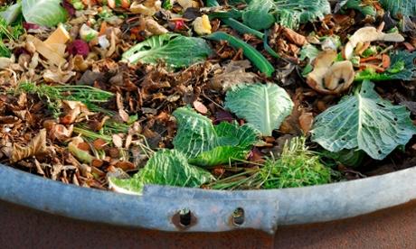 compost.jpg week.jpg