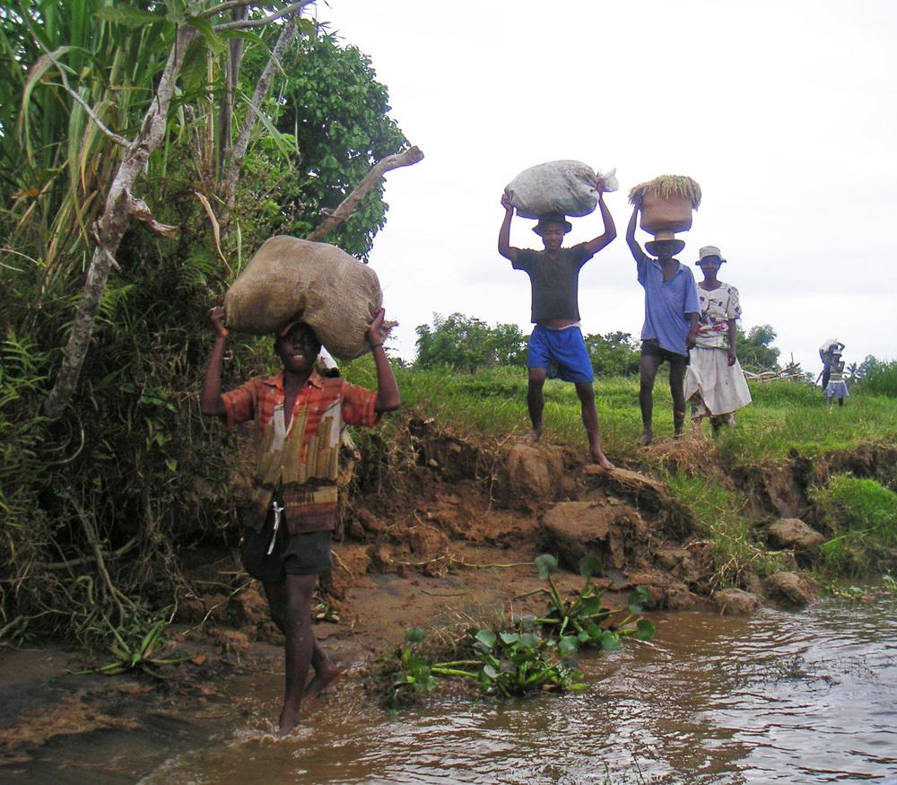Nosy Mangabe, Madagascar