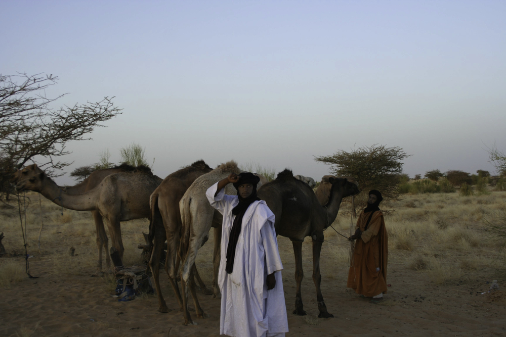 Tuaregs in the Sahara Desert