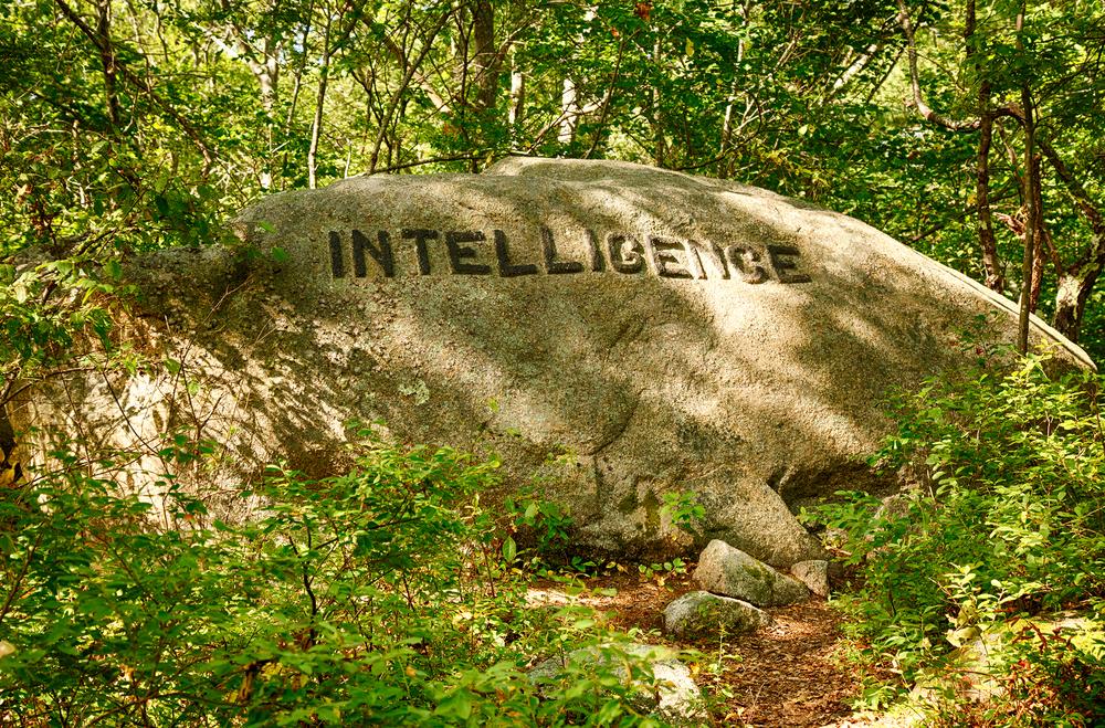 intelligence-boulder.jpg