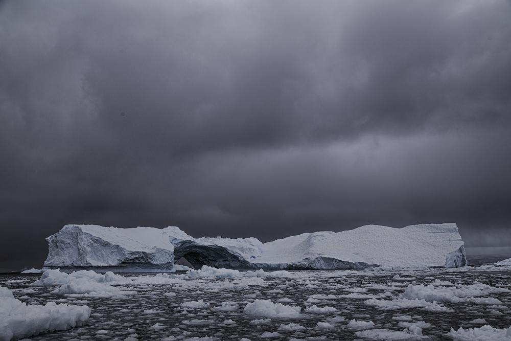 Iceberg in Cierva Cove