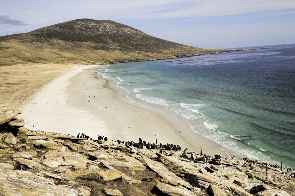 Saunders Island Beach.jpg