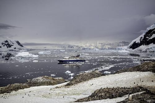 Neko-Harbor-Antarctica.jpg