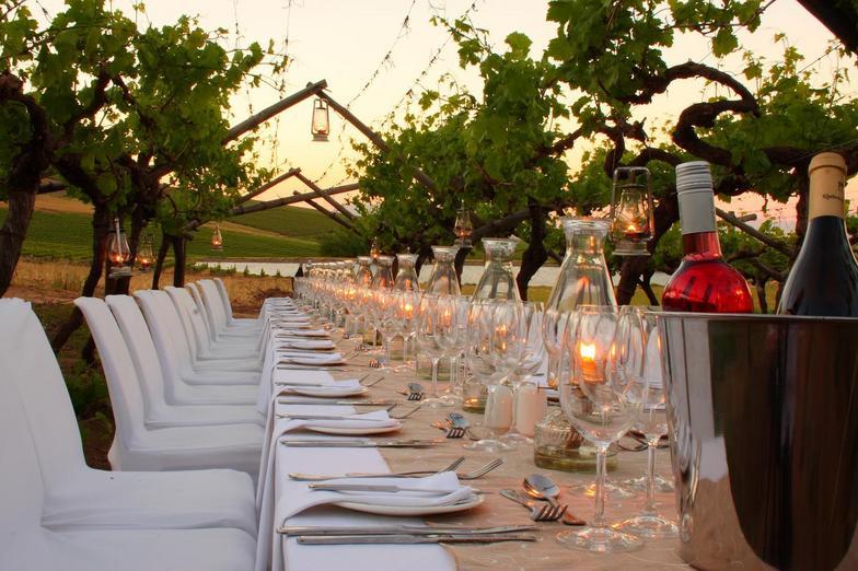 vineyard-dinner.jpg