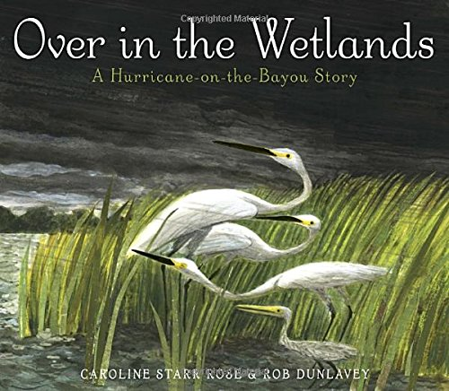 overinthewetlands.jpg