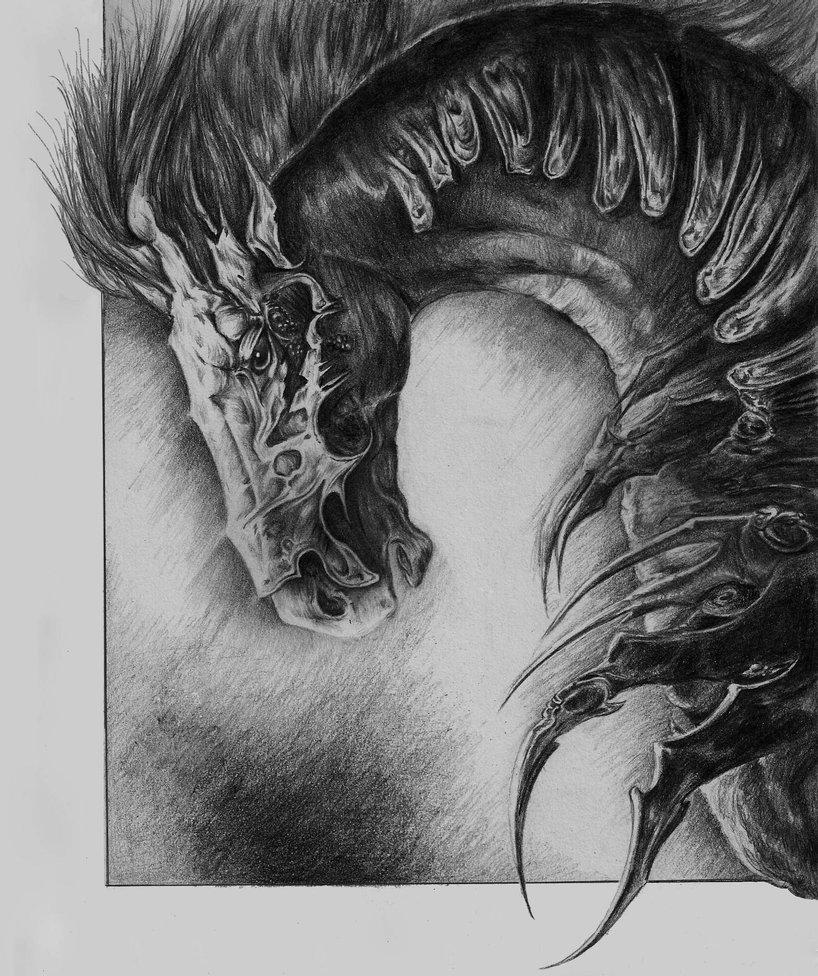 Wild-Horse-(for-Austin-Writing-Life).jpg