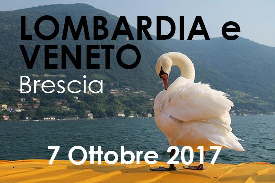 Iscriviti al training | 7 ottobre 2017 a Brescia