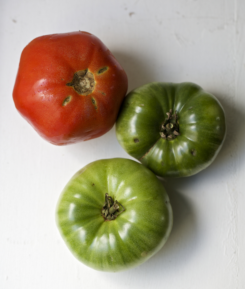 This month we focus on tomatoes!