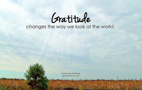 Friday Gratitude Journal - Finding Joy Through Gratitude by Casey Voorhies RD, LD, Dallas Nutritional Counseling