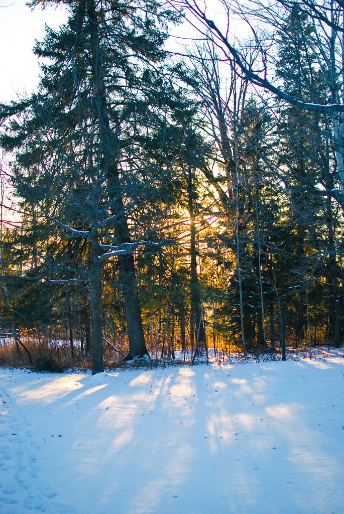 Jay Cooke State Park // Minnesota