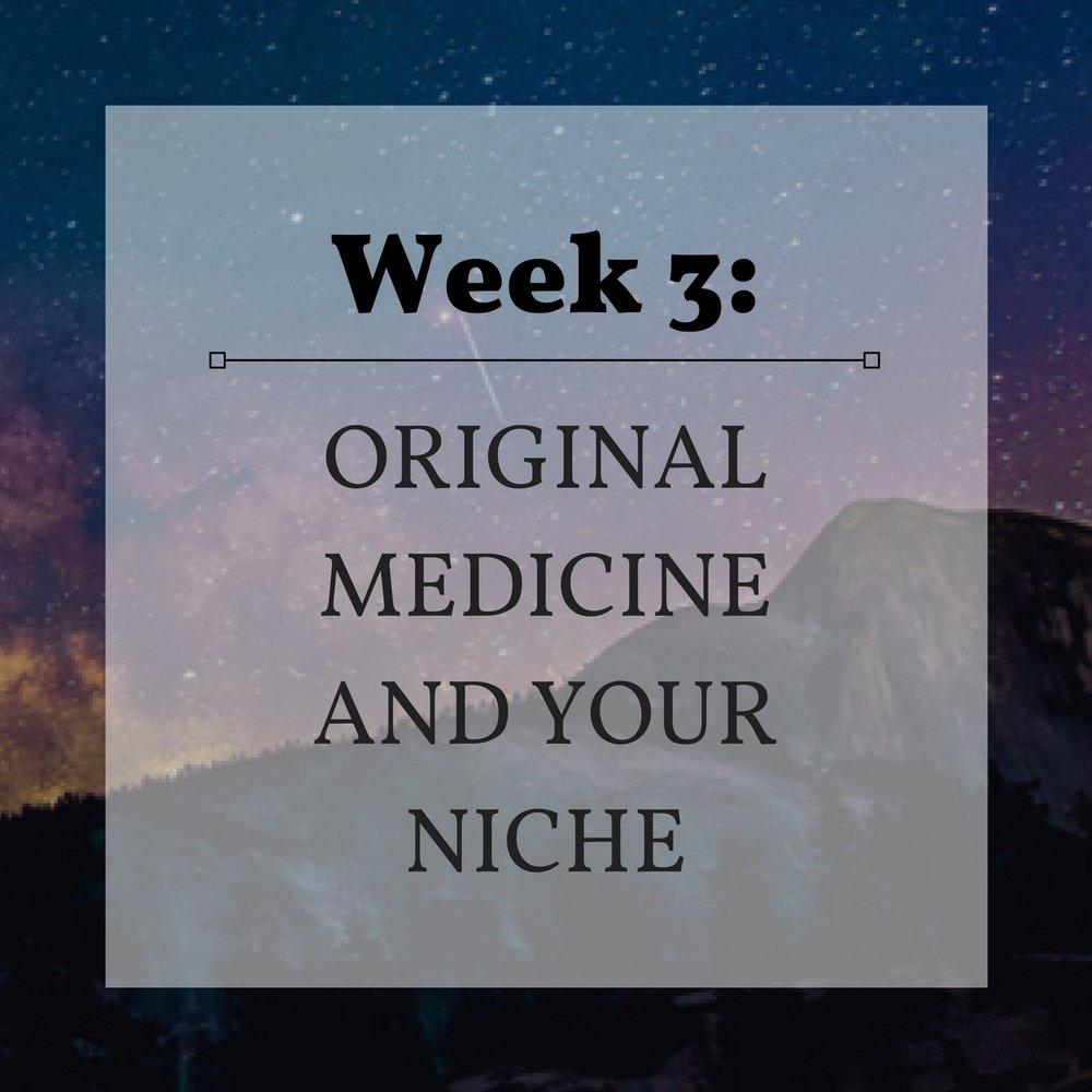 Week 3 Original Medicine and Your Niche