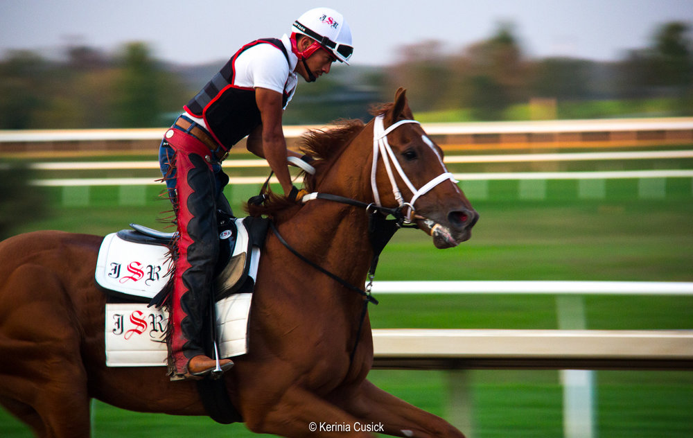 keeneland race track morning workout.jpg