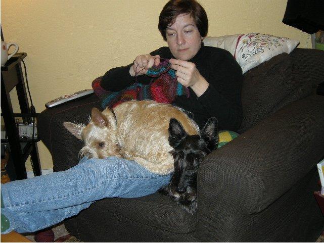 Paisley Knitting.jpg
