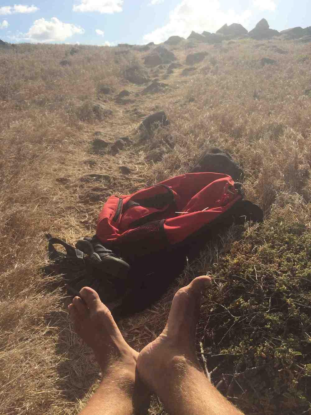 Pinel_feet_backpack.jpg