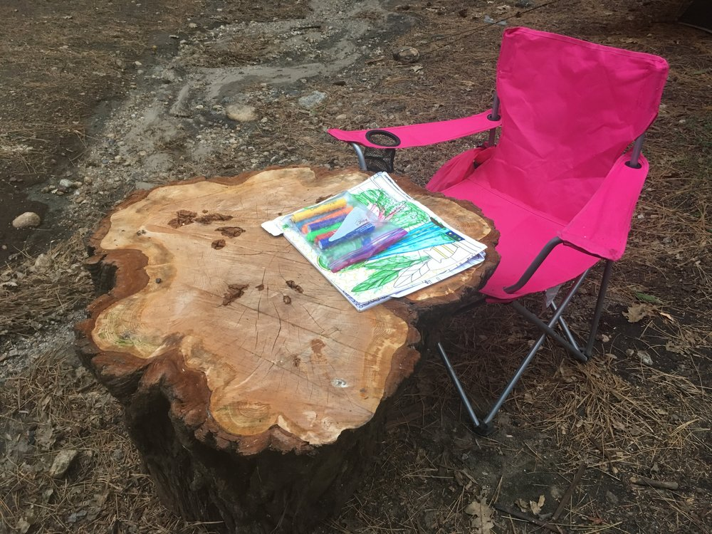 This stump was cluttering our campsite, until it became Lily's coloring table.