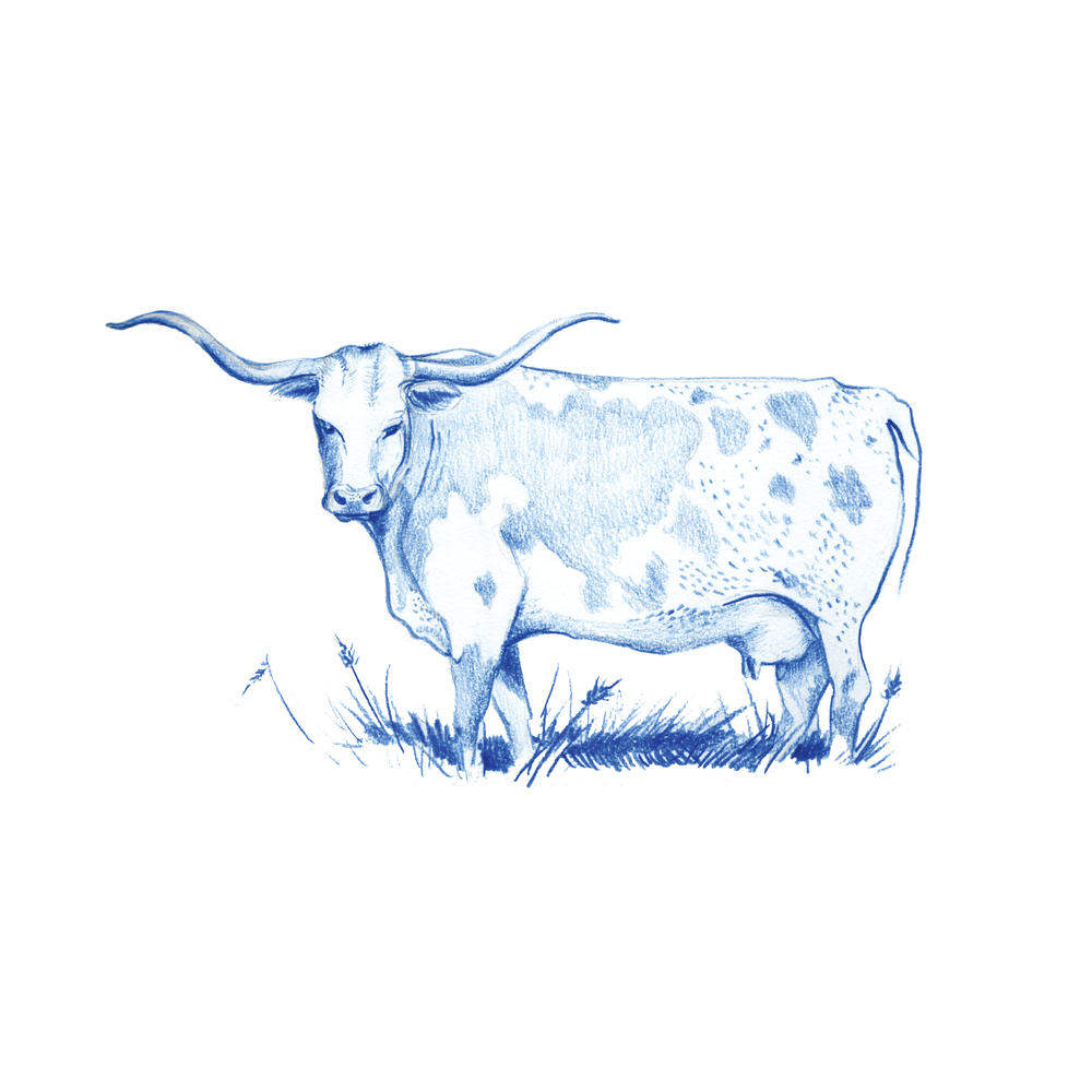 jrocro_texas toile_Longhorn.png