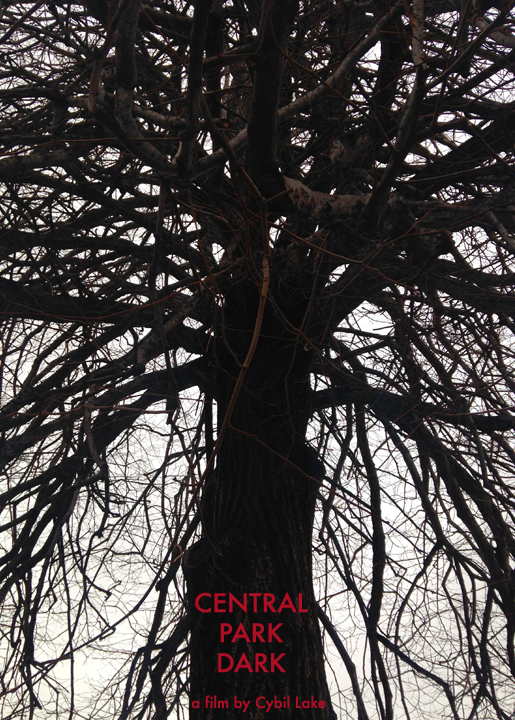 Central Park Dark is a new horror film written by Cybil Lake