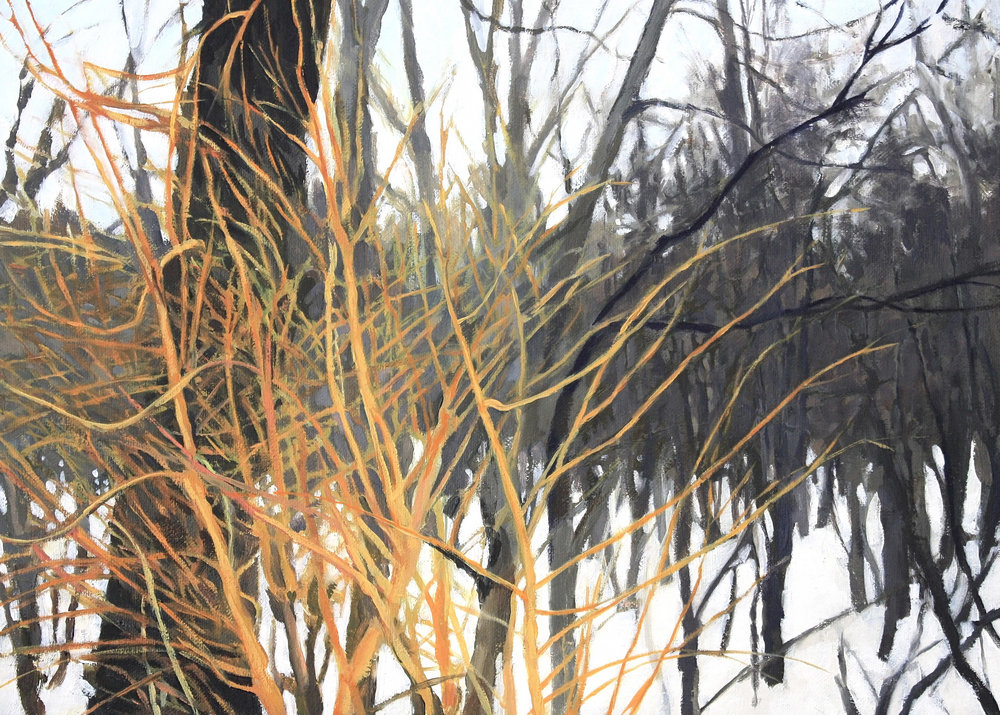Willows in Snow.jpg