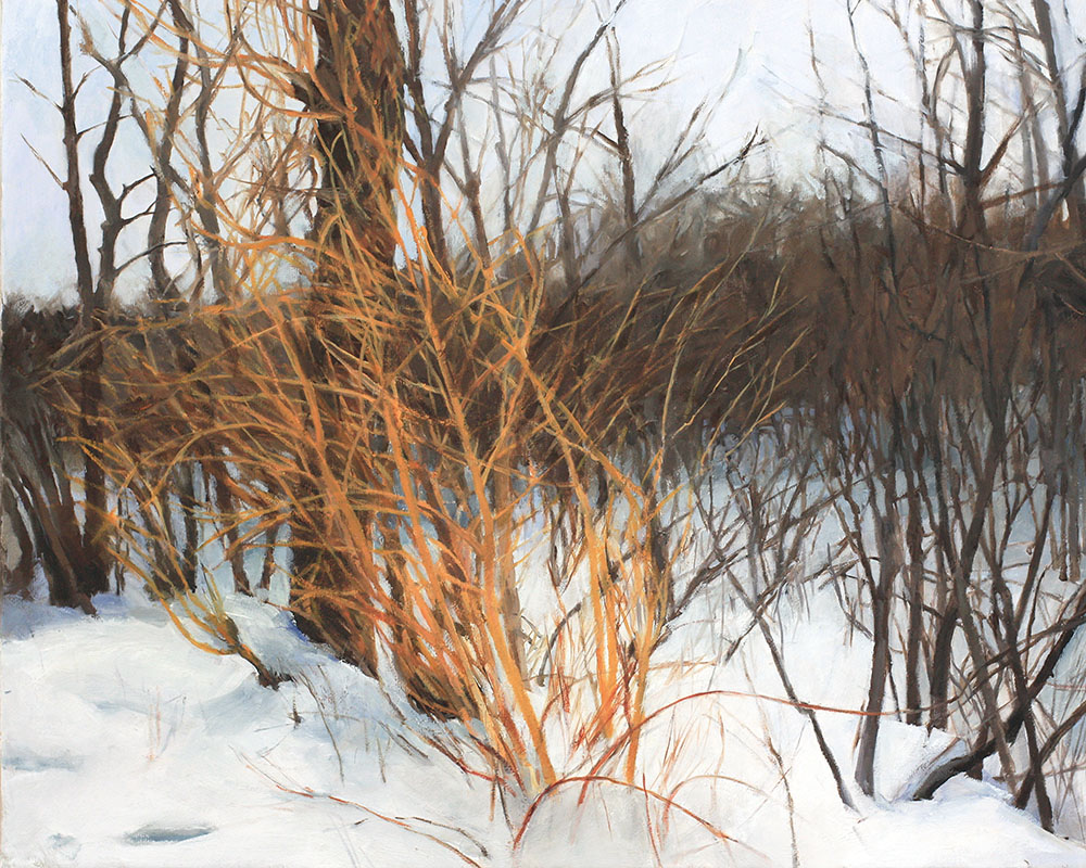 Willows in Snow-upstate.jpg