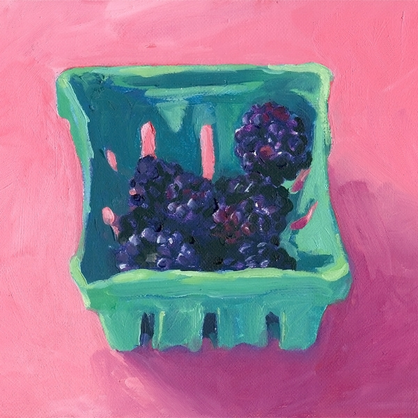 Blackberries on Hot Pink