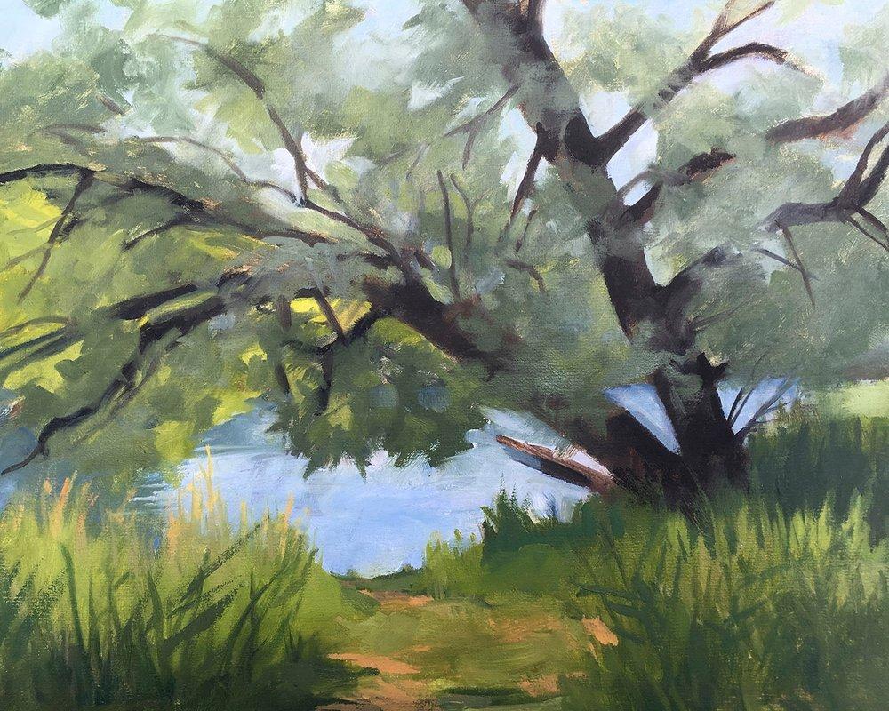 Peebles Island Willow