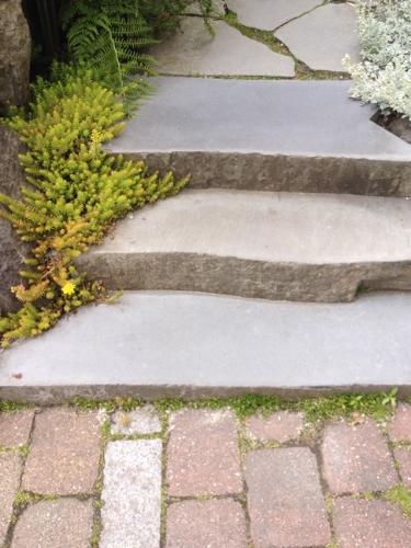 Landscapesupply.ca steps-72 dpi.jpg