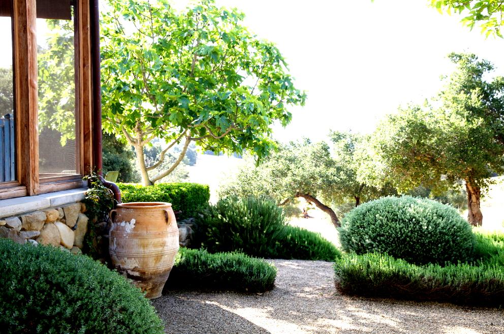 Siamo La Luce garden rustic or European.jpg