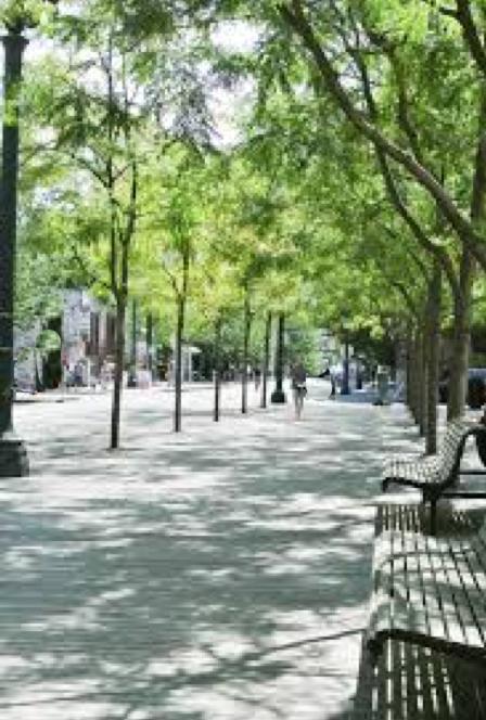 Siamo La Luce town sq bench.jpg