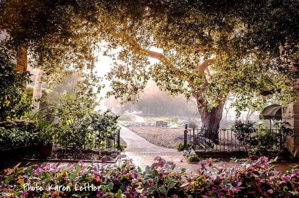 Siamo La Luce enchanted garden.jpg