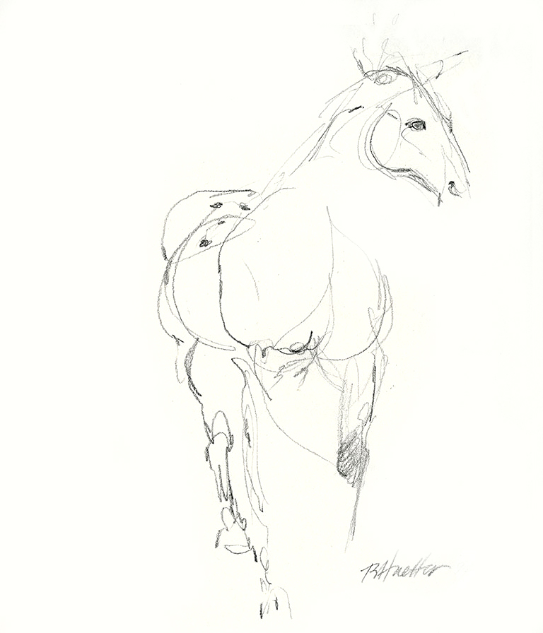 Bobbe Horse.jpg