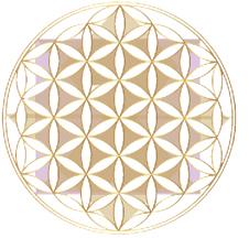Angelica Christi Logo
