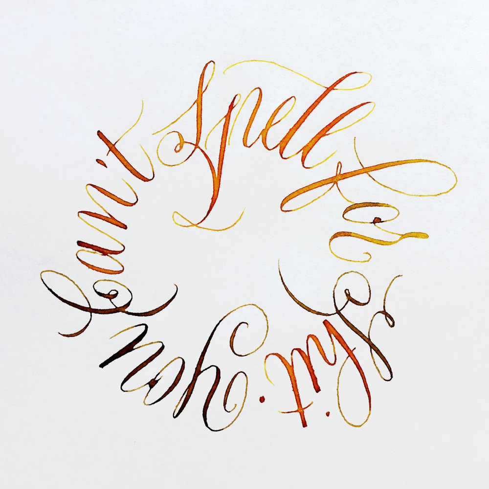 "Post number #57:  ""You can't spell for shit"" Copperplate calligraphy using a pointed flexible pen and liquid watercolours."