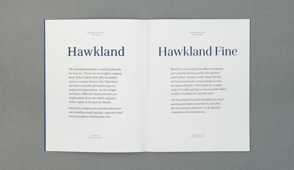 Hawkland-book2.jpg
