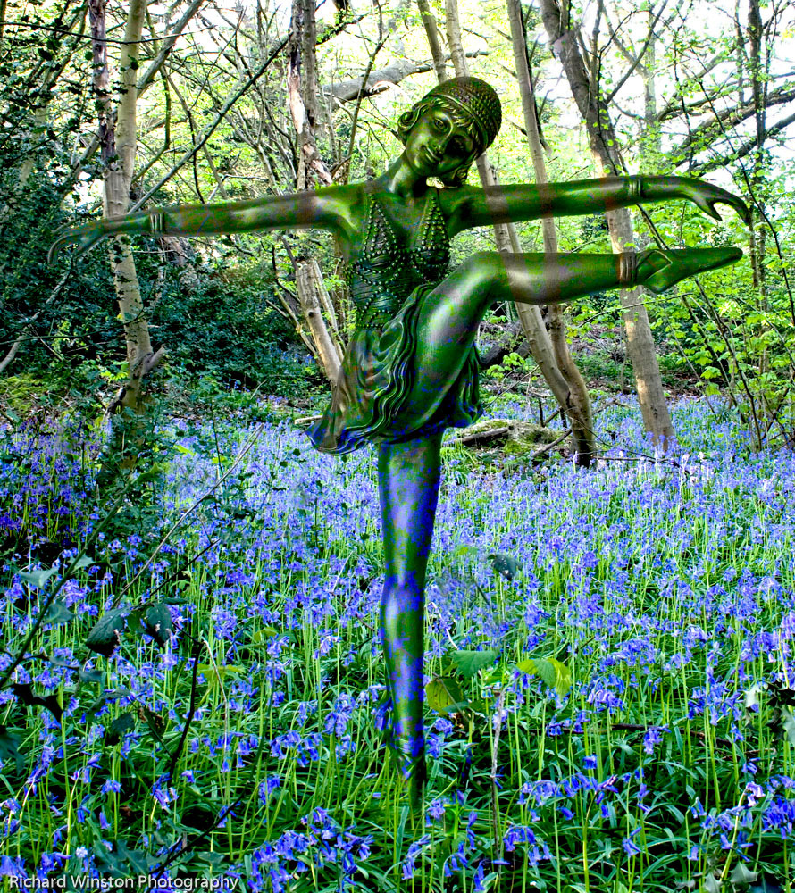 The Dancing Nymph of Bluebell Wood