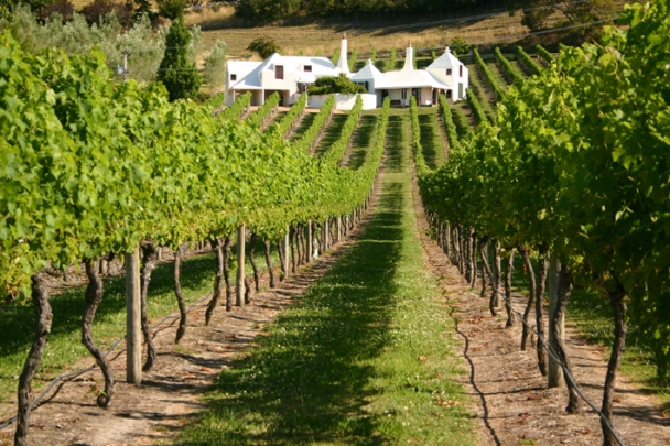 The Te Mata 'Coleraine' Vineyard also includes the current owner's 1980's home designed by architect Ian Athfield.