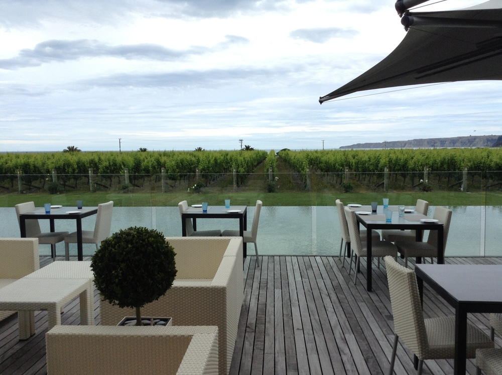 The view from the outside area of the restaurant through the vines and out to Cape Kidnappers is just gorgeous.