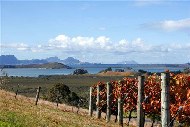 The Estate certainly earns their name with the beautiful view over Whangarei Harbour.