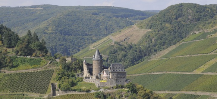 Stahleck Castle with surrounding vineyards.
