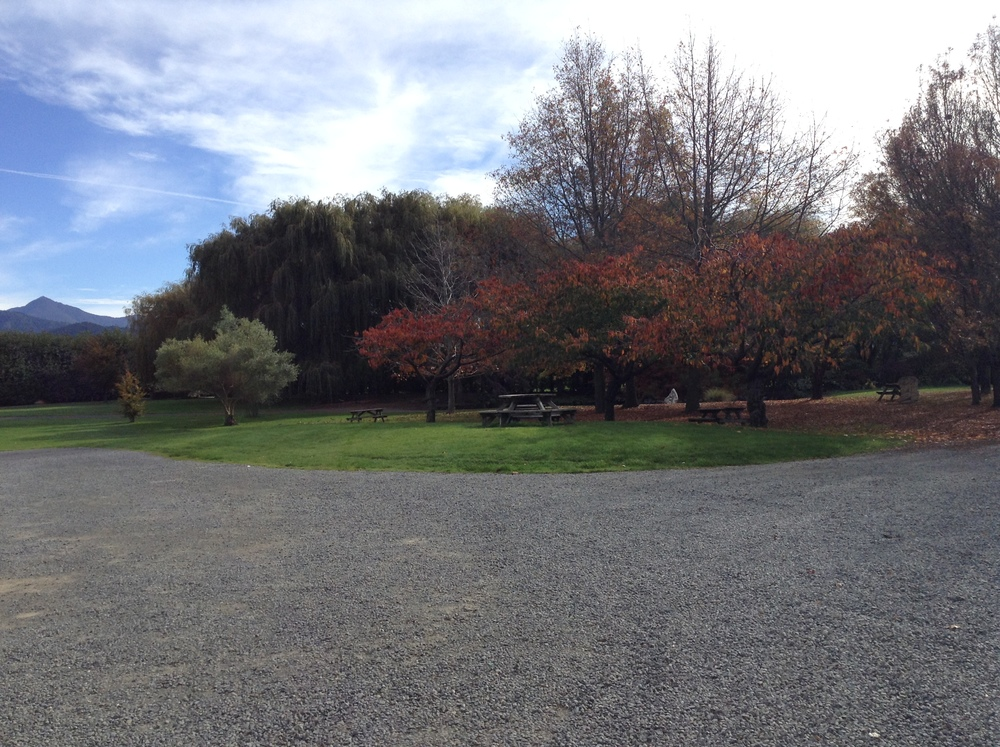 The lovely picnic area at Forrest Wines.